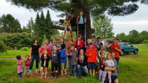 4H picture tree